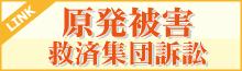 原発被害救済集団訴訟